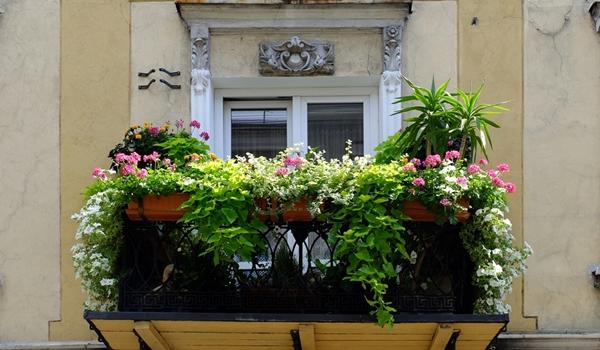 Wybiorą najładniejsze balkony