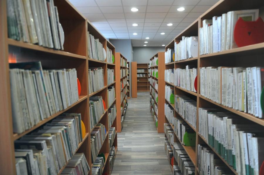 Biblioteka po metamorfozie