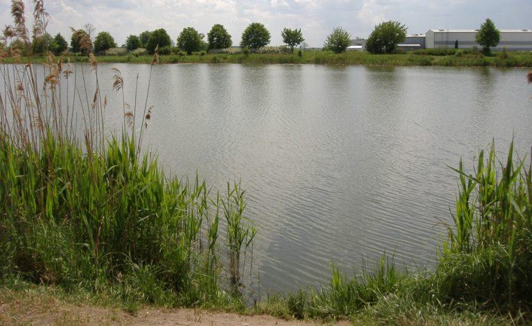Ruszyła rewitalizacja części zalewu i terenów sąsiadujących