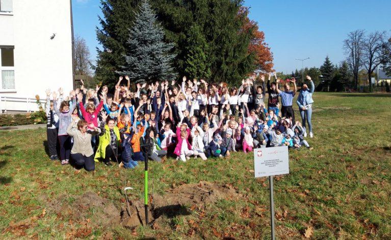 W Poczesnej zasadzili drzewa