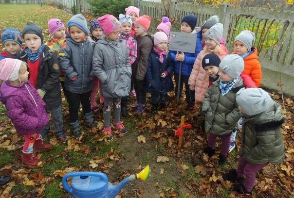 Drzewa na 100. rocznicę odzyskania przez Polskę Niepodległości