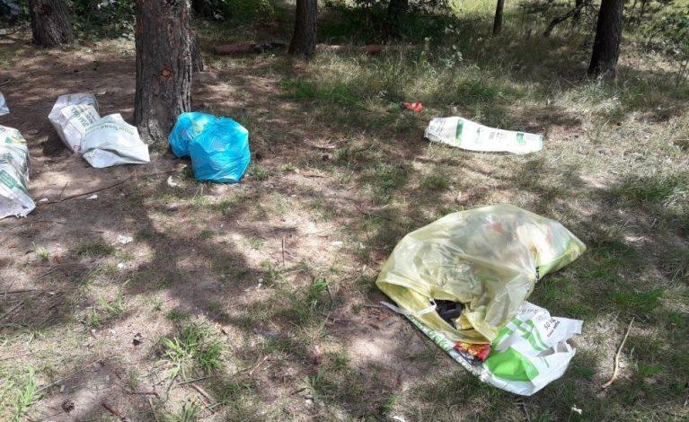 Wyrzuciła śmieci… w lesie