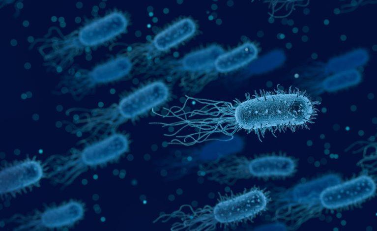 Bakteria w wodzie w kłobuckim szpitalu