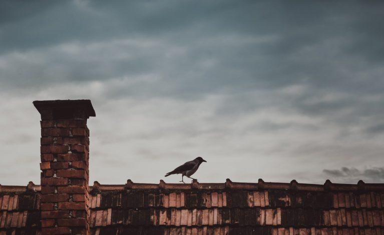 Straż miejska sprawdzi, kto zatruwa powietrze