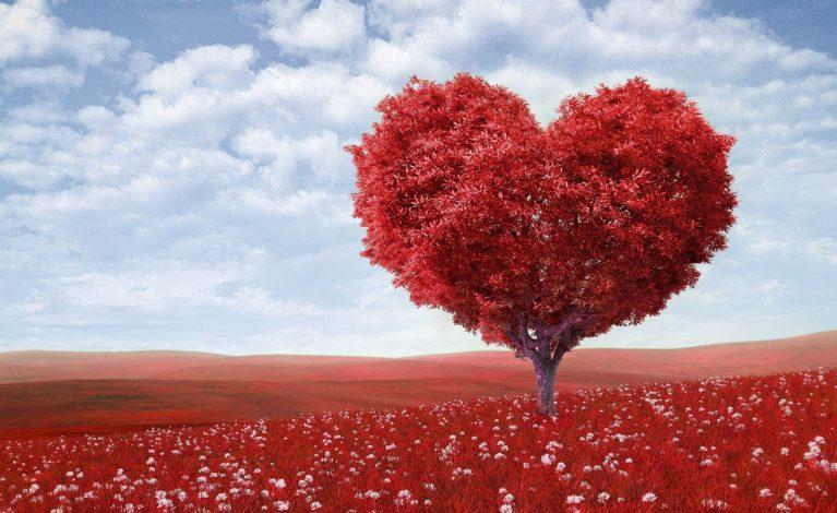 Walentynki – święto zakochanych, czy sprawdzian, ile facet może wydać na swoją kobietę?