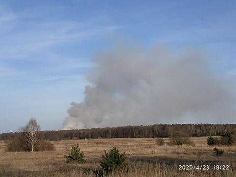 Płonie las w miejscowości Teodorów [video]