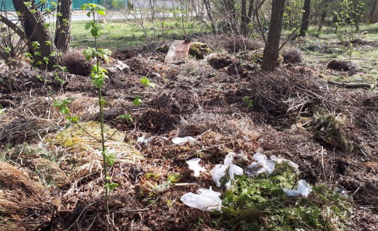 Gmina sprząta, a śmieci wciąż przybywa