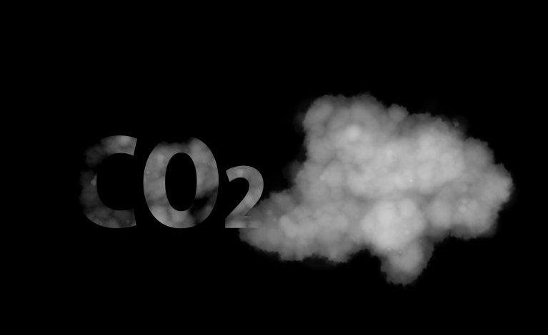 Przedszkolaki chcą zatrzymać smog