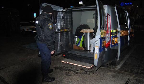 Strażnicy miejscy pomagają bezdomnym w czasie mrozów