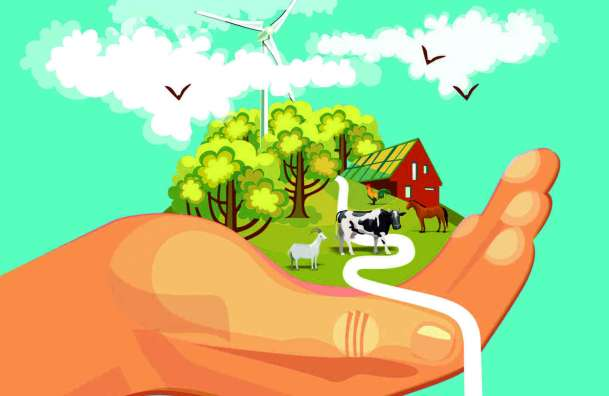 Wybiorą najbardziej ekologiczną zagrodę